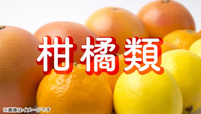 柑橘キロ売り